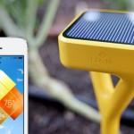 Tingaus Sodininko Malonumui: Išmanus, Saulės Energija Varomas Įrenginys, Kuris Tikrina, Stebi ir Laisto Augalus